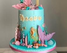 Neeva 1 - Mermaid front view use.jpg