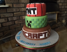 TNT Minecraft side view.jpg