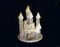 rapunzel-castle