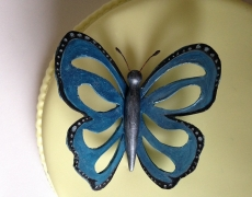 Butterfly closeup 2.JPG