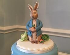 Peter Rabbit CTP 3.JPG