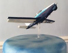 Plane topper 2.jpg