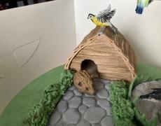 Tortoise House 2.jpg