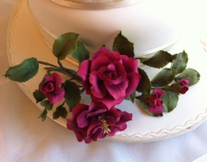 burgundy-roses-closeup