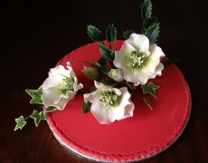 christmas-roses-display