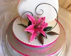 pink-lily-closeup