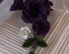 purple-lis-closeup-4