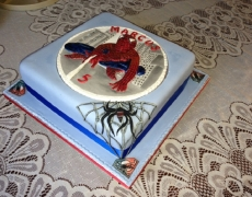 spiderman-side-view