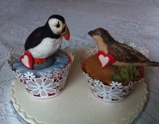 puffin-sparrow